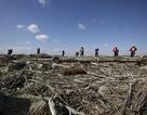 Nhật 2 năm sau thảm họa sóng thần: Khó khăn vẫn bộn bề