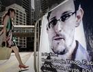 Snowden: Làm việc cho CIA chỉ với mục đích thu thập thông tin