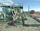 Nhật phát hiện 18 trẻ em ở Fukushima bị ung thư