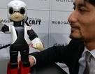 Nhật đưa robot biết nói lên trạm vũ trụ