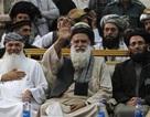 Người đưa al-Qaeda tới Afghanistan chạy đua tổng thống