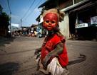 Ngành kinh doanh xiếc khỉ mặt nạ rợn người ở Indonesia