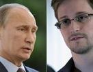 Snowden và quyền lực của ông Putin