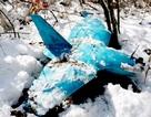 Máy bay do thám rơi ở Hàn Quốc: Triều Tiên mua của Trung Quốc?