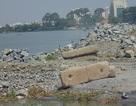 """Cù lao """"bấp bênh"""" trước dự án lấn sông Đồng Nai"""
