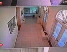 Đã tìm được đối tượng ăn cắp tác phẩm của họa sĩ Lê Bá Đảng
