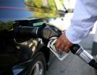 Giá dầu thế giới tiếp tục giảm mạnh