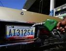 Giá dầu lao dốc trở lại sau 4 phiên tăng