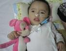 Nhiều tấm lòng đến với cô bé bị bỏ rơi trong bệnh viện