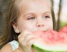 Dinh dưỡng cho trẻ 1 - 3 tuổi