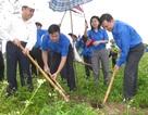 Phát động tuần lễ Quốc gia nước sạch và vệ sinh môi trường