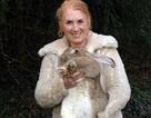 Thỏ bự nhất thế giới qua đời