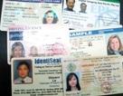 Cuối năm 2009 sẽ đổi giấy phép lái xe thông minh