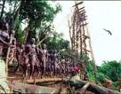 Video: Xem thổ dân nhảy Bungee