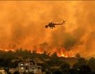 """Chùm ảnh: Cháy rừng """"nhuốm đỏ"""" Hi Lạp"""