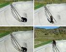 Chùm ảnh: Gấu leo thang thoát hiểm tài tình