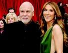 Celine Dion không nản chí sau khi sảy thai