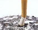 ADN biến đổi vì nghiện thuốc lá