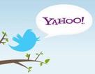 """Yahoo """"nhờ cậy"""" Twitter để hút khách"""