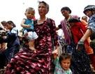 Nga triệu tập họp khẩn về Kyrgyzstan, Uzbekistan đóng cửa biên giới