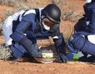 Nhật tìm thấy hộp chứa cát bụi từ tiểu hành tinh trong vũ trụ