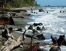 Động đất mạnh ở Thái Bình Dương