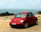Giảm giá xe New Beetle