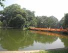Vườn Bách thảo - lẵng hoa xanh giữa lòng Hà Nội