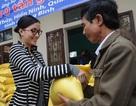 Người đẹp Huỳnh Bích Phương cùng Eurowindow ủng hộ đồng bào lũ lụt