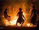 Nhiếp ảnh gia VN giành giải cao trong cuộc thi ảnh Quốc tế Garuda 2010