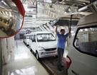 Hãng xe Trung Quốc có thể nắm cổ phần GM