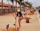 Người đẹp Hoa hậu trái đất trồng cây xanh tại Đà Nẵng