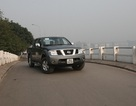 Nissan Navara có giá hơn 600 triệu đồng