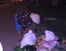 Nhặt rác đêm đông