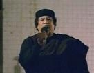 Mỹ: Ông Gadhafi đang tìm hiểu các lựa chọn tị nạn