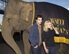 "Robert Pattinson - Reese Witherspoon: ""Đọ dáng"" với voi"