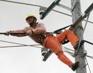 Người thuê nhà được hưởng giá điện bậc thang