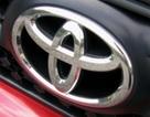 Toyota, Honda, Ford được yêu thích nhất năm 2008