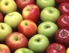 Ăn táo tốt cho não