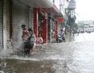 Gần 2.000 hộ dân sơ tán, nguy cơ lở bờ sông Nhuệ
