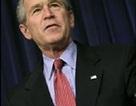 Mỹ không có đủ bằng chứng về mối liên hệ Iraq - Al-Qaeda