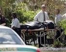 Một nhạc sỹ Mỹ bắn chết vợ và 2 con rồi tự sát