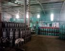 Triệt phá cơ sở sang chiết gas trái phép tại Hà Nội