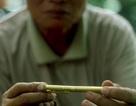 """Người Hà Nội cuối cùng kiếm sống bằng nghề """"khắc bút tặng phẩm"""""""