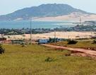 Dự án điện hạt nhân Ninh Thuận có khả năng chậm lại… 6 năm