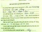 """Hàng chục giấy phép lái xe vi phạm được trả trước nhờ """"quan hệ thân quen"""""""