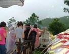 Hàng vạn người đội mưa đến viếng mộ Đại tướng dịp Tết độc lập
