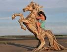 """""""Hô biến"""" gỗ vụn, rễ cây… thành những tác phẩm tuyệt đẹp"""