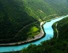 Dòng sông duy nhất trên thế giới có màu xanh lục tuyệt đẹp