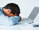 Chế độ Sleep hay Hibernate trên máy tính hiệu quả hơn?